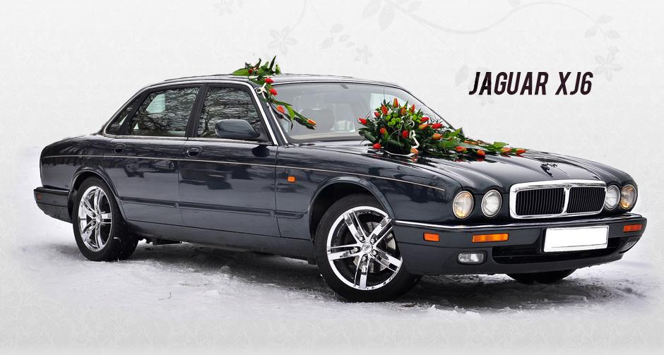 jaguar auto ślubne biała podlaska