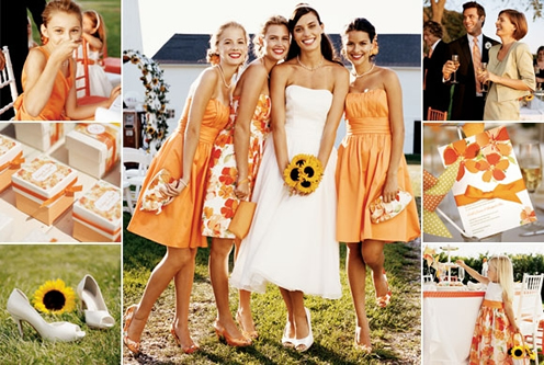 pomarańczowo-żółte weselen