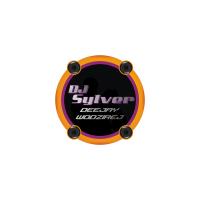 logo dj sylver