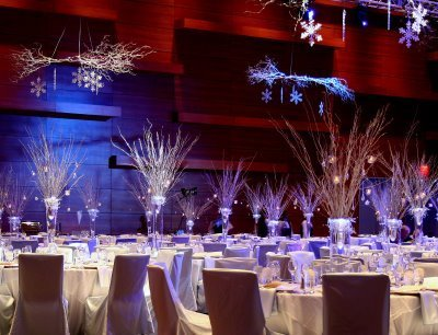 zimowa dekoraxcja sali weselnej